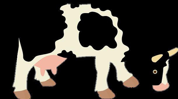 cow-1204968__340